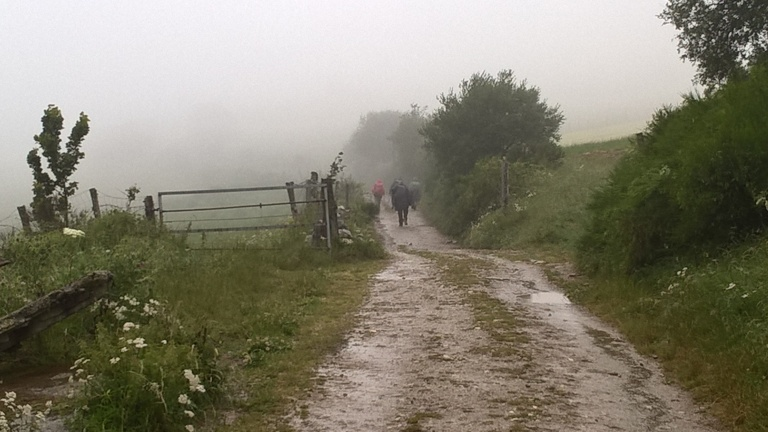 Camino - A nice walk