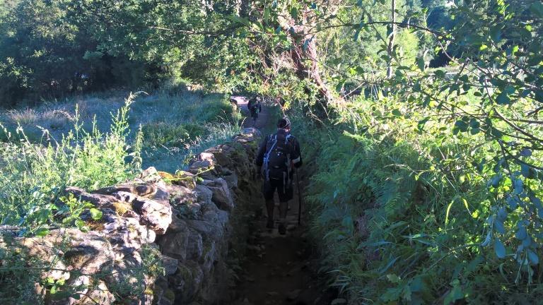 Camino Pathway