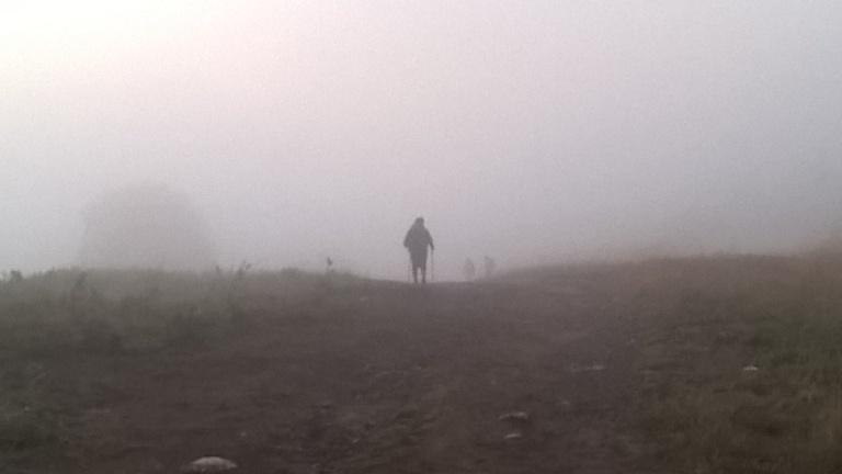 Foggy Camino Morning