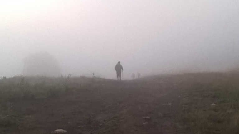 Foggy Camino Morning