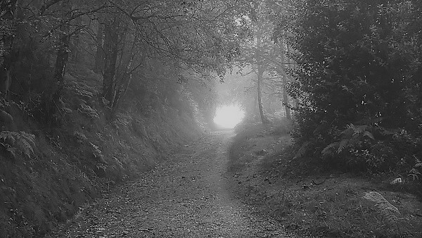 A foggy trail outside of Triacastela on the Camino de Santiago.