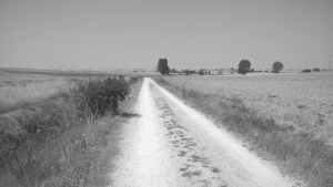 The lonely Meseta on the Camino de Santiago
